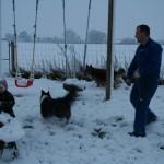 >Sneboldkamp