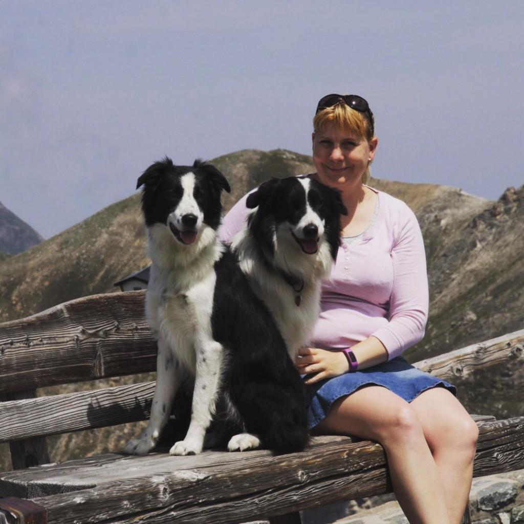 På toppen af Edelweiss-bjerget.