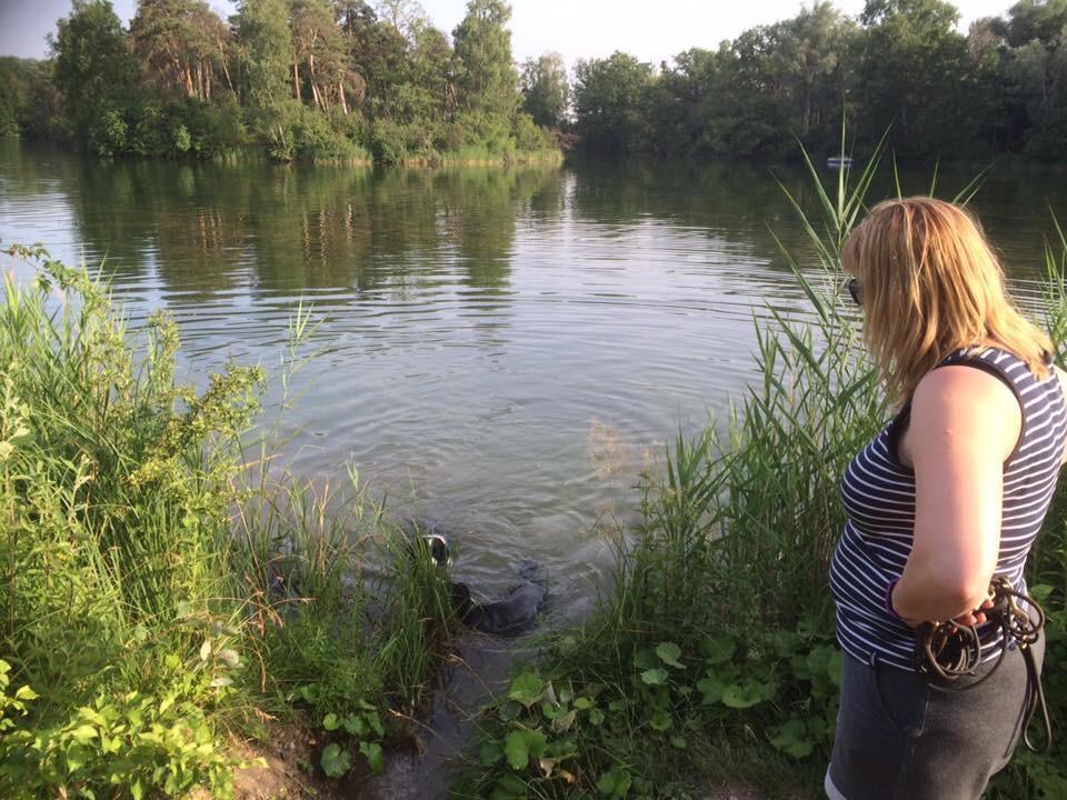 """Hundene elsker at bade. Her gik vi en tur langs Donau ved Ingolstadt, hvor hundene fik lov at dyppe sig i """"Die Shönen Bluen Donau"""" (eller hvordan det nu er...)"""