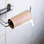 Toiletrulle DIY